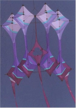 One of Robert's Gallileo kites