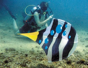 Scubadoo underwater